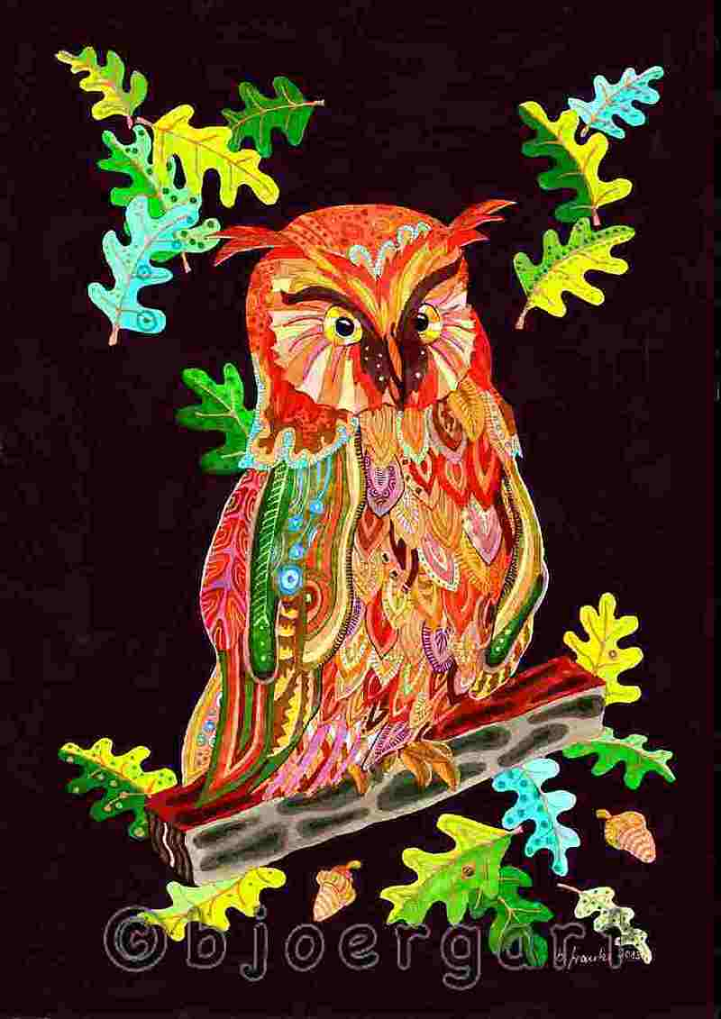 the owl - colorful wisdom ...